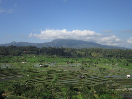 Tirta Gangga - Roadside views...